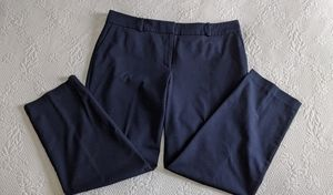 Ann Taylor Factory Navy Trousers